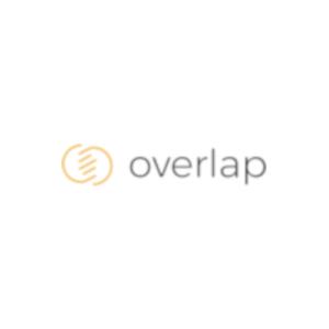 Analiza użyteczności - 10 Heurystyk Nielsena - Overlap
