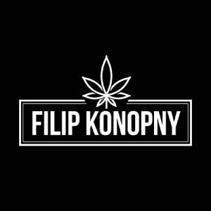 Naturalne oleje konopne CBD 30% - Filip Konopny